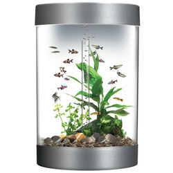9 Gallon Aquarium Kit with Halogen Light