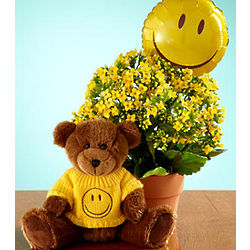Have a Nice Day Bear and Plant