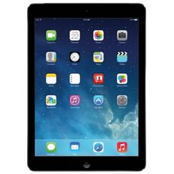 16 Gb Gray Apple iPad Air with WiFi