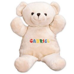 Boy's Embroidered Name Teddy Bear