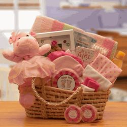 Babies Are Precious Moses Carrier Baby Gift Set