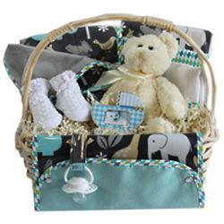 Totem Baby Gift Basket