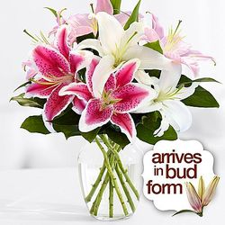 Birthday Oriental Lilies Bouquet