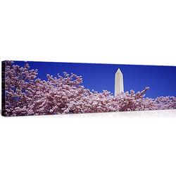 Washington Monument Washington DC Canvas