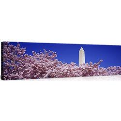 Washington Monument Washington DC Canvas