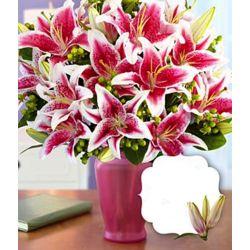 Premium Stargazer Lilies Bouquet