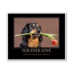 Fur-Ever Love Personalized Art Print