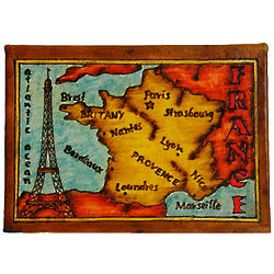 Map of France Leather Photo Album