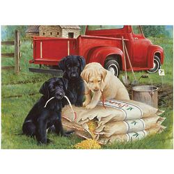 Just Dogs Jigsaw Puzzle