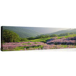 Spring in Yellowstone National Park WY Canvas