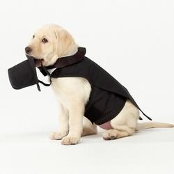 Doggie Black Tuxedo