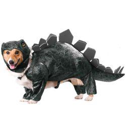 Stegosaurus Dog Costume