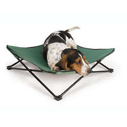 Green Breezy Bunk Portable Dog Bed