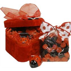 Lady Bug Shaped Box with Candle and Gummi Candies