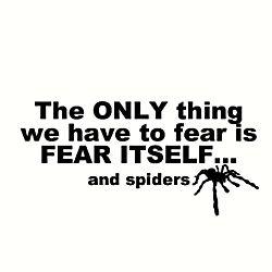 The Only Thing We Have To Fear is Fear Itself and Spiders T-Shirt