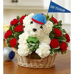 Sports Hound Floral Arrangement