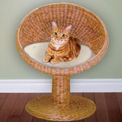 Elevated Rattan Cat Bed Dome