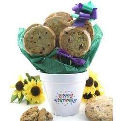 Birthday Flower Pot Cookie Bouquet with 6 Gourmet Cookies