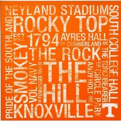 Tennessee Volunteers 24x24 Square Subway Art Canvas