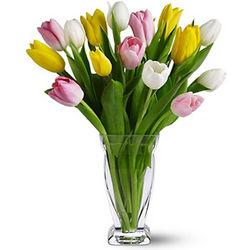 Spring Tulips in Glass Vase