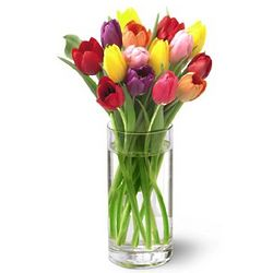 Bright Lights Tulip Bouquet