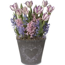 Tulip and Hyacinth Bulbs in Heart Pot