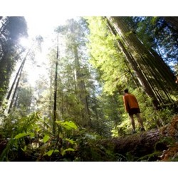 Santa Cruz Wilderness Adventure for Two