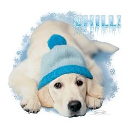 Chill! Winter Dog T-Shirt