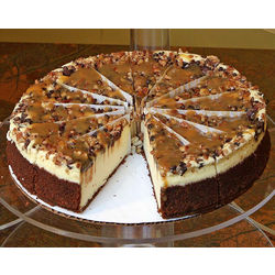 Large Gourmet Turtle Cheesecake