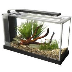 Modern Aquarium Kit in Black