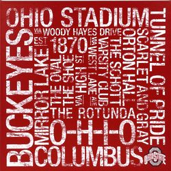 Ohio State Buckeyes 24x24 Square Subway Art Canvas