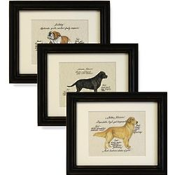 Handcrafted Framed Dog Breed Print