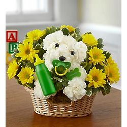 New Baby Puppy Dog Bouquet