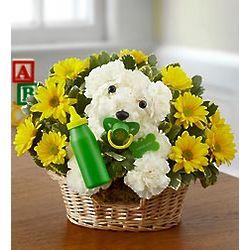 New Baby Puppy Dog Bouquet