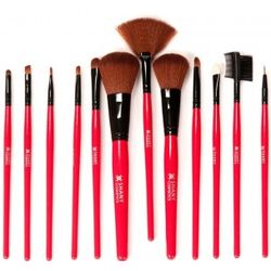 Shany Professional 12 Piece Natural Cosmetic Brush Set in Red