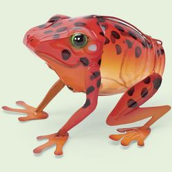 Recycled Bottle Orange Dart Frog
