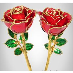 """His & Hers 8"""" Preserved Roses"""