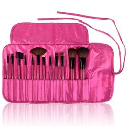 Shany Professional 12 Piece Natural Brush Set in Pink