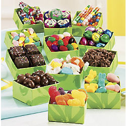 One Dozen Boxes of Candy Sampler