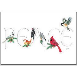 Peaceful Perch Birds Christmas Cards Set