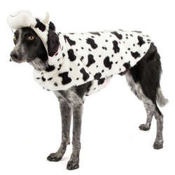 Dog's Halloween Cow Costume