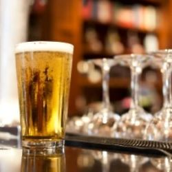 Chicago Beer Tasting and Bar Tour for 1