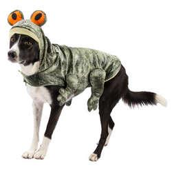Dog's Halloween Frog Costume