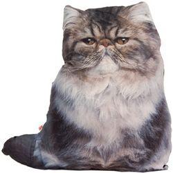 Persian Cat Pillow