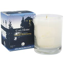 CInnamon Scented Soy Wax Candle