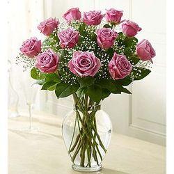 Rose Elegance Premium Long Stem Purple Roses