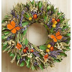 Preserved Butterfly Wreath