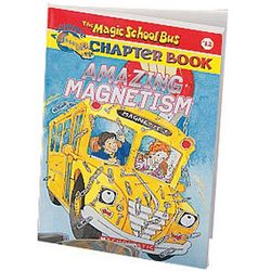 Amazing Magnetism Book