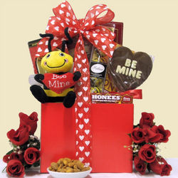 Bee Mine Valentine's Day Gift Basket for Teen or Young Adult