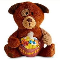 Personalized Birthday Plush Pocket Pet